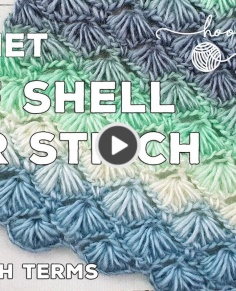 Crochet Puff Shell Star Stitch